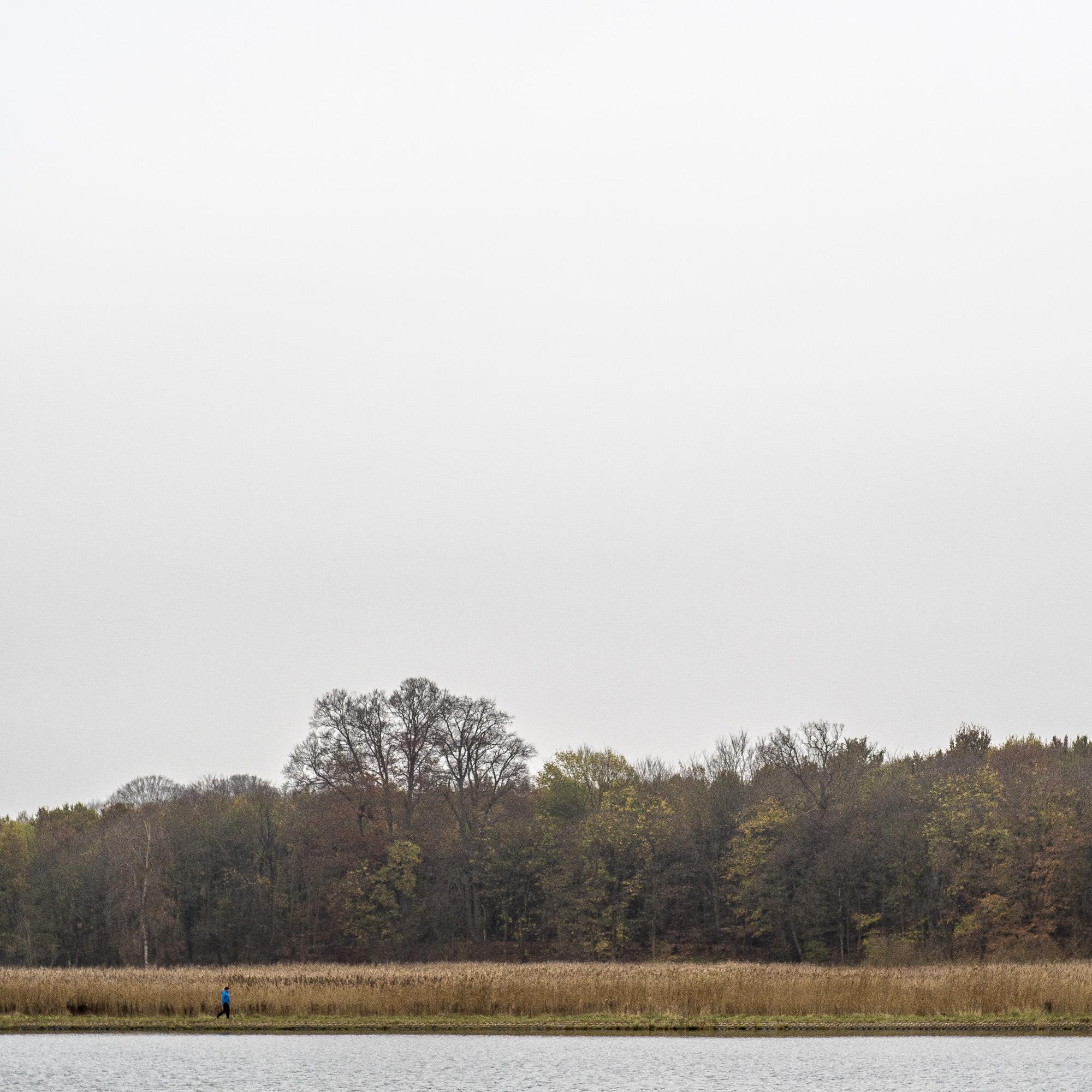 Jogger in Blau vor Schilfgürtel unter grauem Novemberhimmel